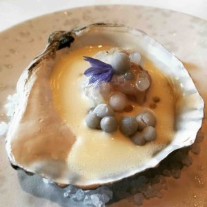 Bord'eau oester